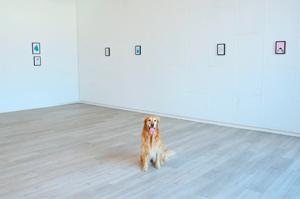 kunstmitte-2019-hund