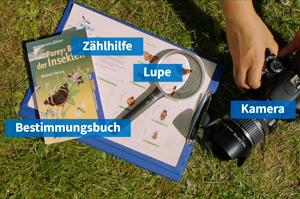 nabu-insektensommer-hilfsmittel